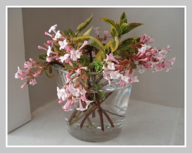 Flowers The New Bathroom Air Freshener The Dorset Finca