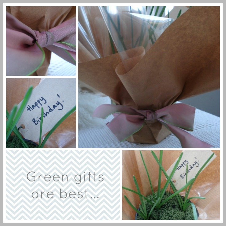 green gifts are best