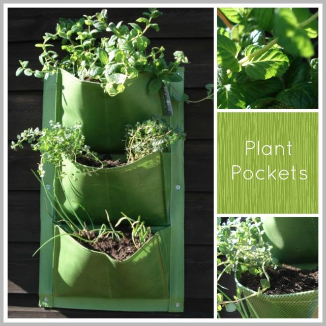 plant pockets