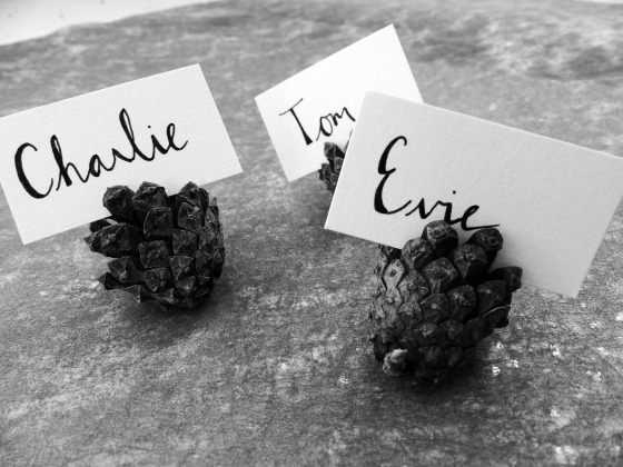 pinecone placecards