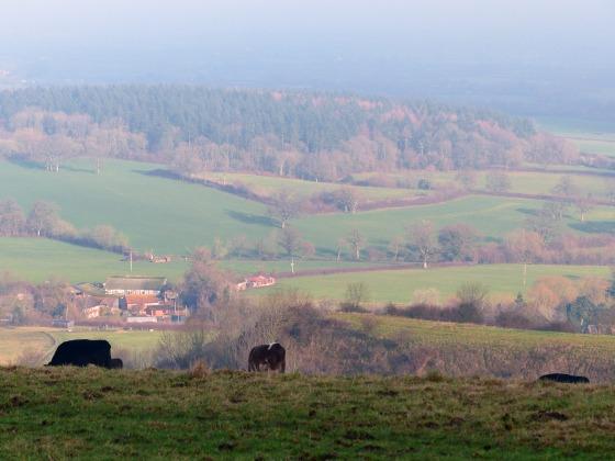 Okeford Hill