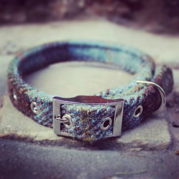 harris tweed collar sweetpea and boo