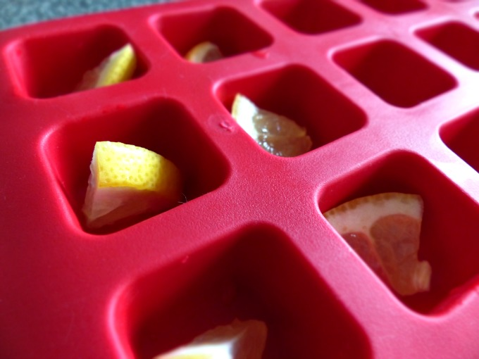 fruit in ice cube tray