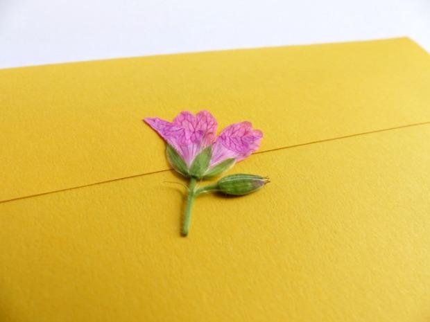 pressed wild flower envelope seal
