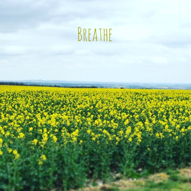 breathe graphic