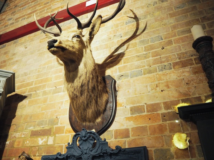 stag head on the wall at the barn cafe