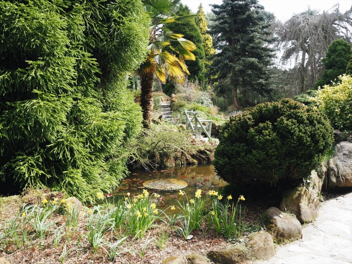 view of the pond at Compton Acres in Dorset
