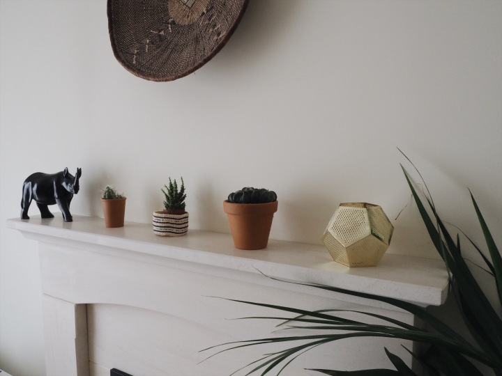 cacti-mantlepiece