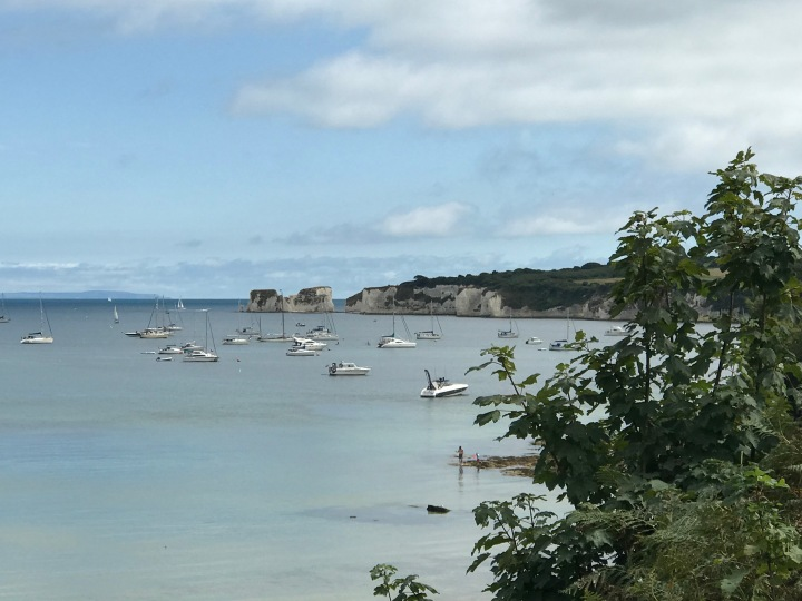 View out to Old Harry